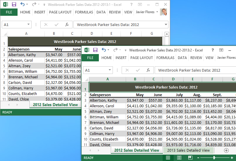 Excel 2013: Freezing Panes and View Options