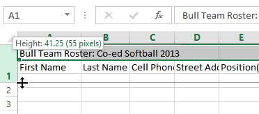 Excel 2013: Modifying Columns, Rows, and Cells