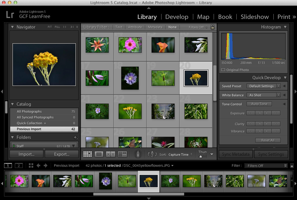 screenshot of lightroom