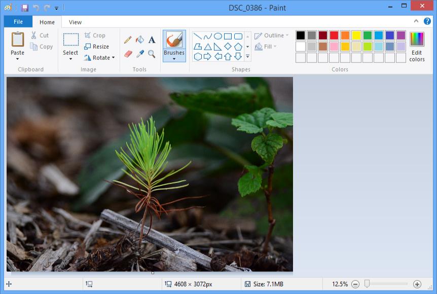 Image Editing 101: Image Editing Software