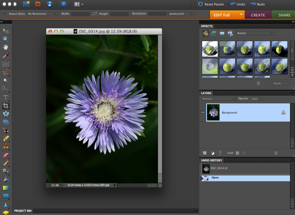 screenshot of photoshop elements