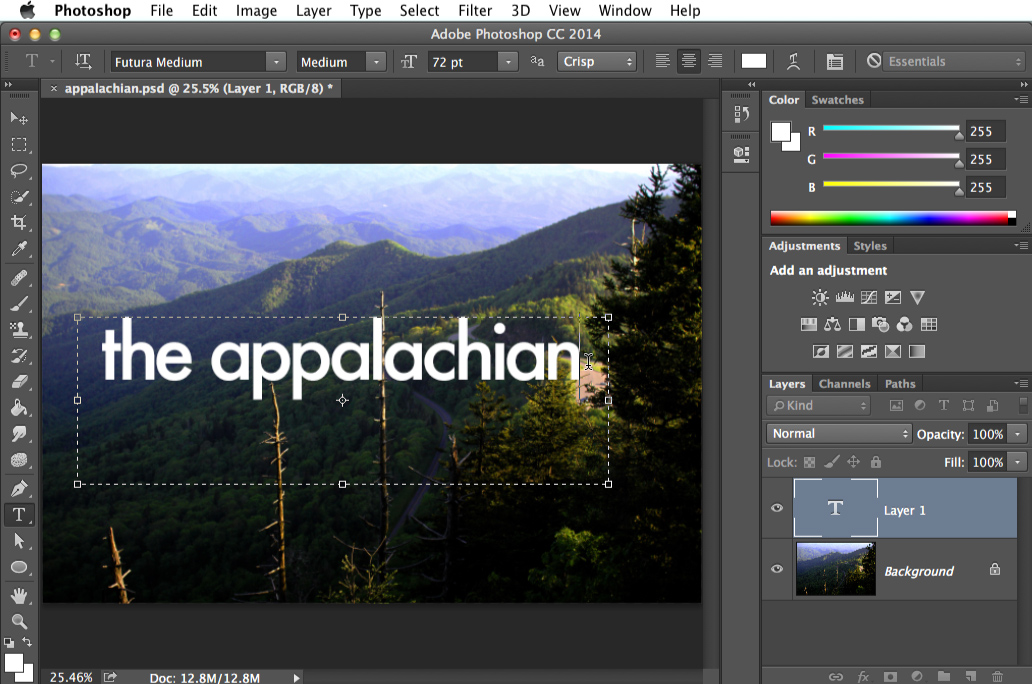 Photoshop Basics: Working with Text